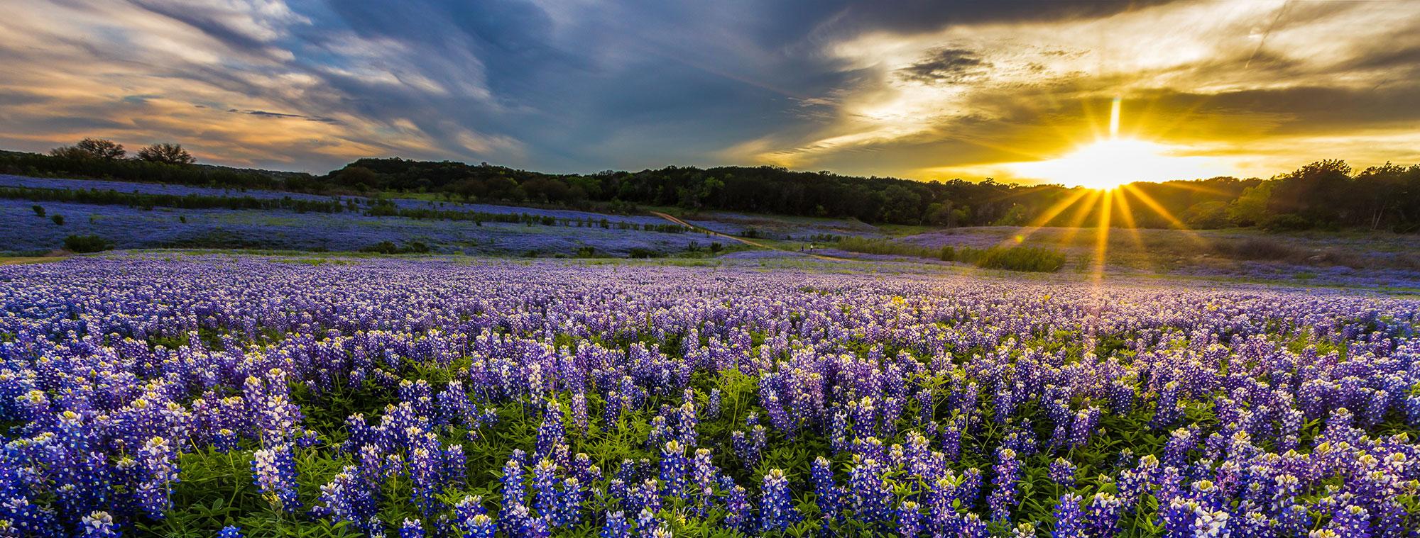 Texas addiction rehab near you